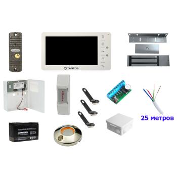 ТД Актив-СБ Видеодомофон и электромагнитный замок
